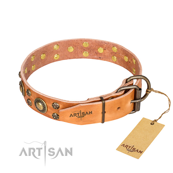 Stylish walking adorned dog collar of reliable leather