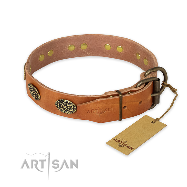 Corrosion proof traditional buckle on full grain genuine leather collar for daily walking your four-legged friend