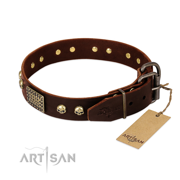Reliable adornments on basic training dog collar