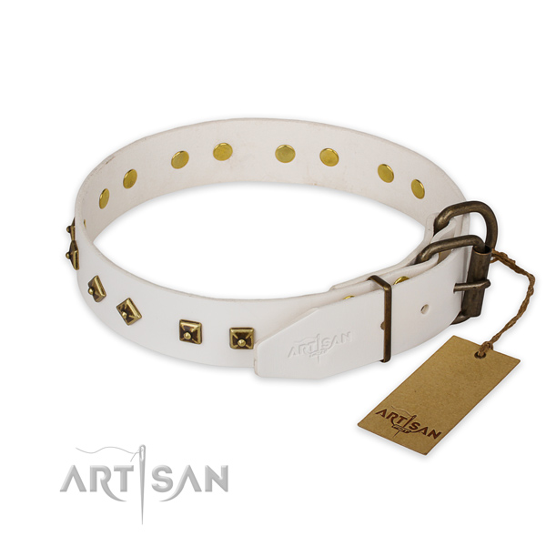 Strong traditional buckle on genuine leather collar for basic training your four-legged friend