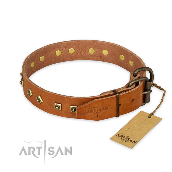 Rust resistant D-ring on full grain leather collar for basic training your pet