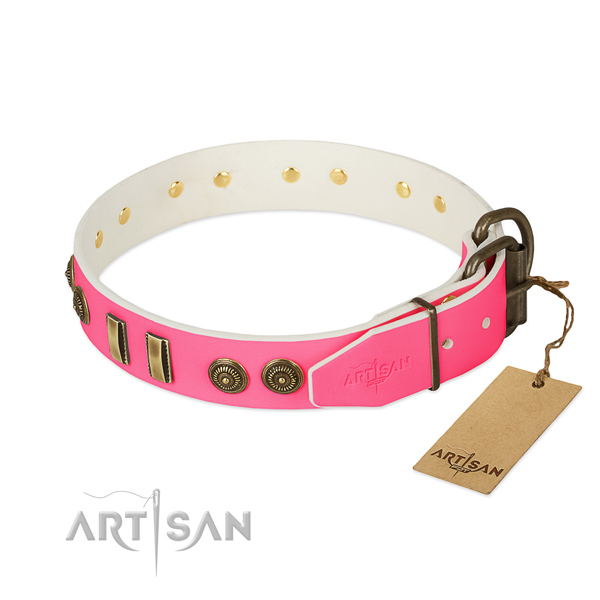 Reliable adornments on full grain genuine leather dog collar for your canine