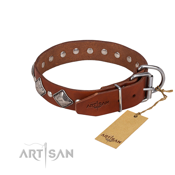 Everyday walking adorned dog collar of quality leather