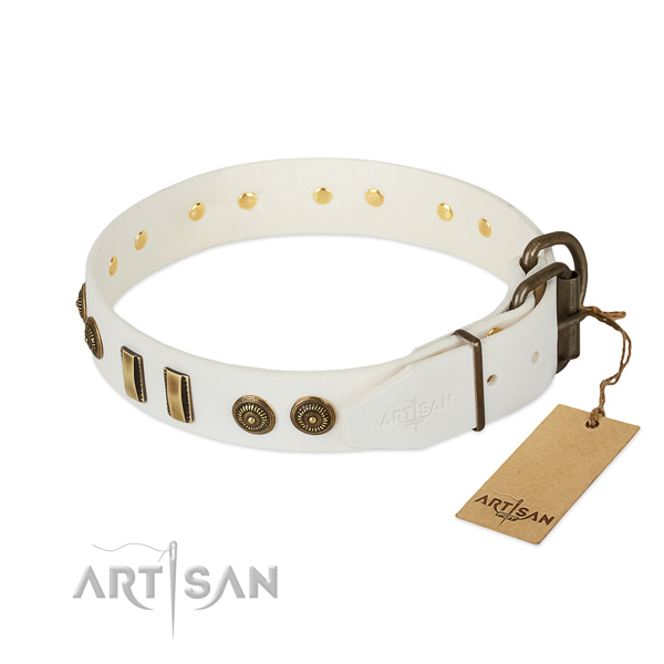 Rust resistant decorations on natural leather dog collar for your pet
