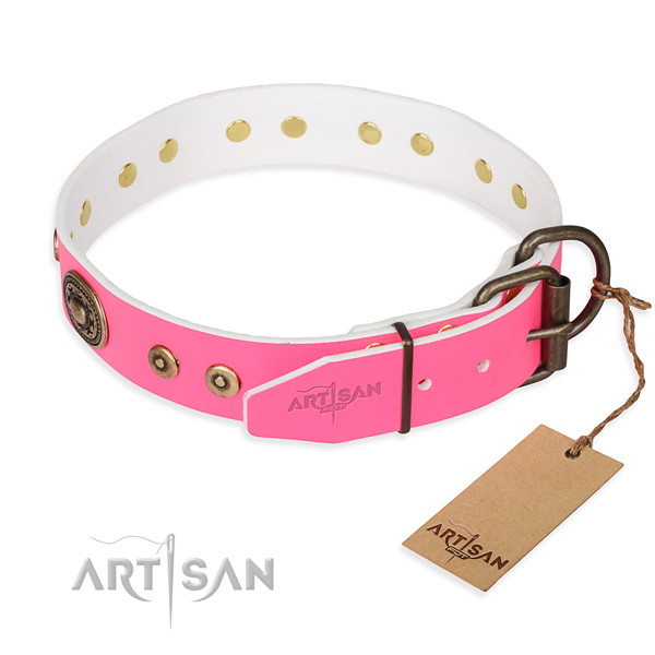 Full grain natural leather dog collar made of soft material with durable embellishments