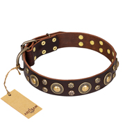 """Flower Melody"" FDT Artisan Brown Leather Labrador Collar with Mixed Studs"