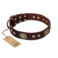 """Breath of Elegance"" FDT Artisan Decorated with Plates Brown Leather Labrador Collar"