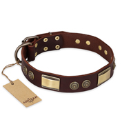 """Golden Stones"" FDT Artisan Brown Leather Labrador Collar with Old Bronze Look Plates and Circles"