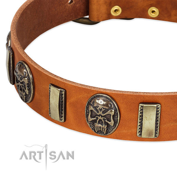 Corrosion proof D-ring on genuine leather dog collar for your doggie