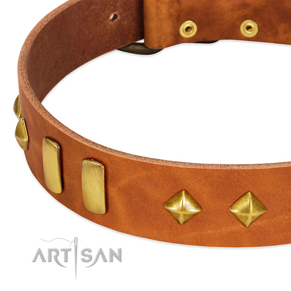 Stylish walking full grain genuine leather dog collar with exquisite adornments