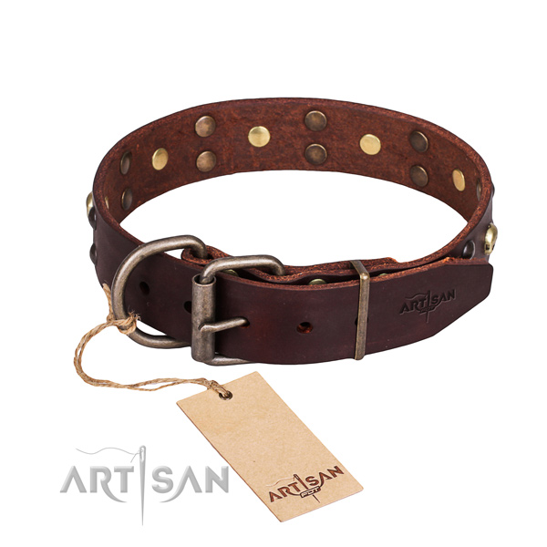 Daily use decorated dog collar of reliable genuine leather