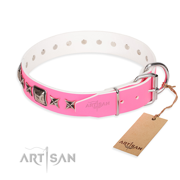 Reliable adorned dog collar of full grain genuine leather