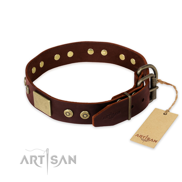 Rust-proof D-ring on walking dog collar