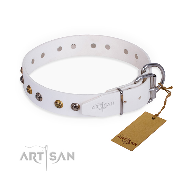 Leather dog collar with significant strong adornments