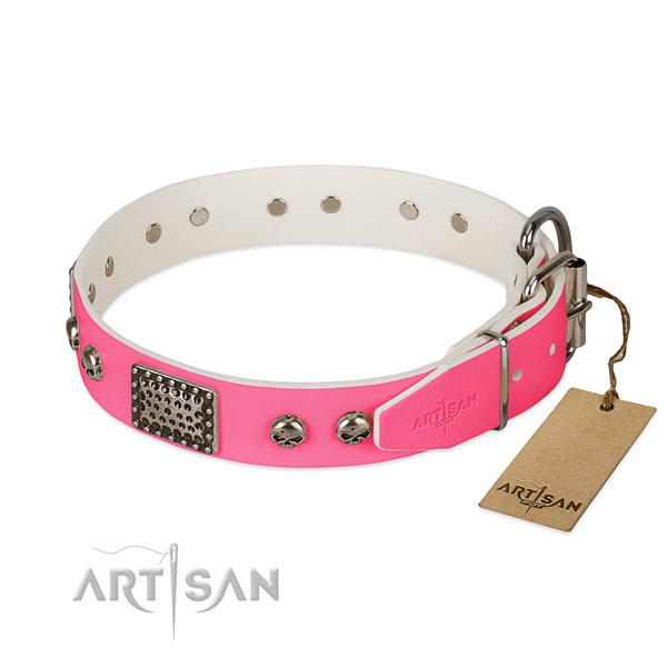 Rust resistant adornments on easy wearing dog collar