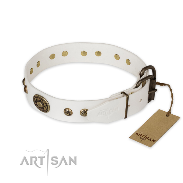 Corrosion resistant buckle on full grain natural leather collar for stylish walking your pet
