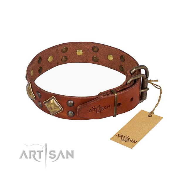 Leather dog collar with unique reliable adornments