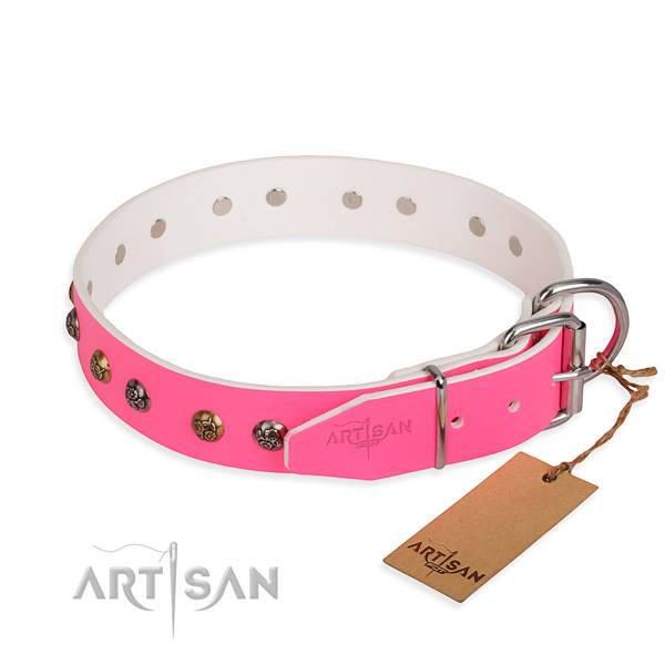 Genuine leather dog collar with exceptional strong embellishments