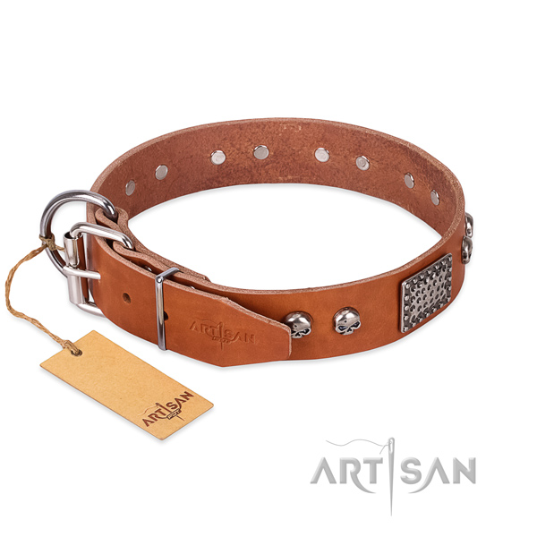 Rust resistant traditional buckle on everyday use dog collar