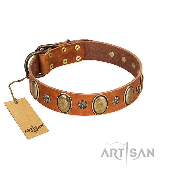 Easy wearing top notch leather dog collar with decorations