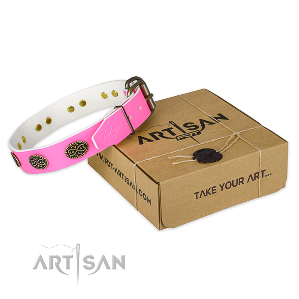 Reliable embellishments on dog collar for everyday walking