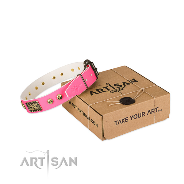 Durable traditional buckle on dog collar for comfy wearing