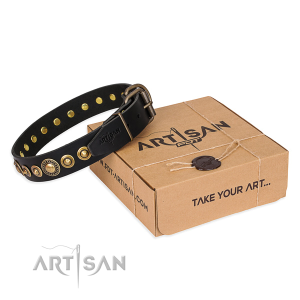 Strong full grain leather dog collar made for handy use