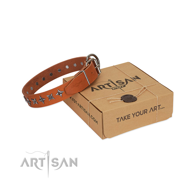 Fancy walking dog collar of high quality genuine leather with decorations