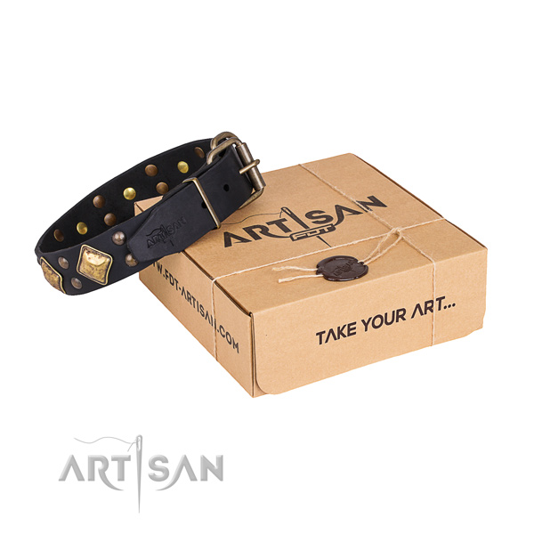 Walking dog collar with Remarkable reliable embellishments