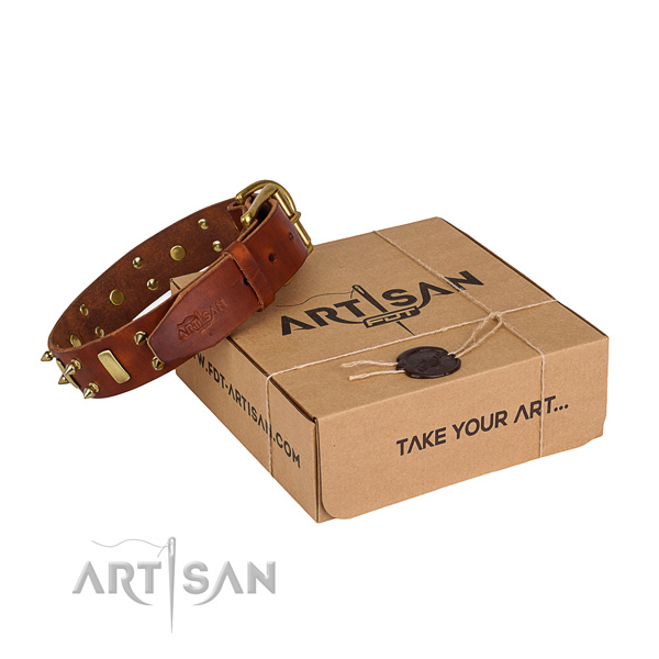 Everyday walking dog collar of durable full grain genuine leather with embellishments
