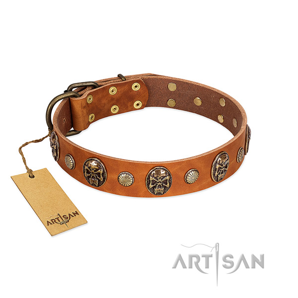Perfect fit full grain genuine leather dog collar for everyday use