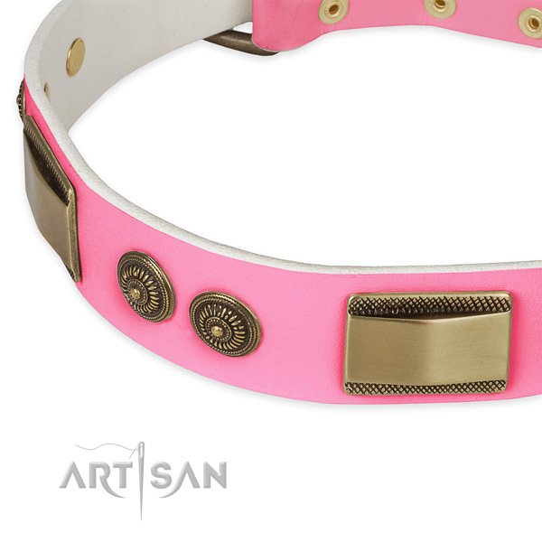 Full grain leather dog collar with embellishments for walking