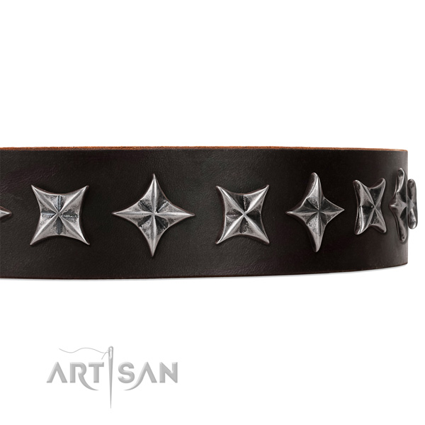 Everyday use adorned dog collar of quality natural leather