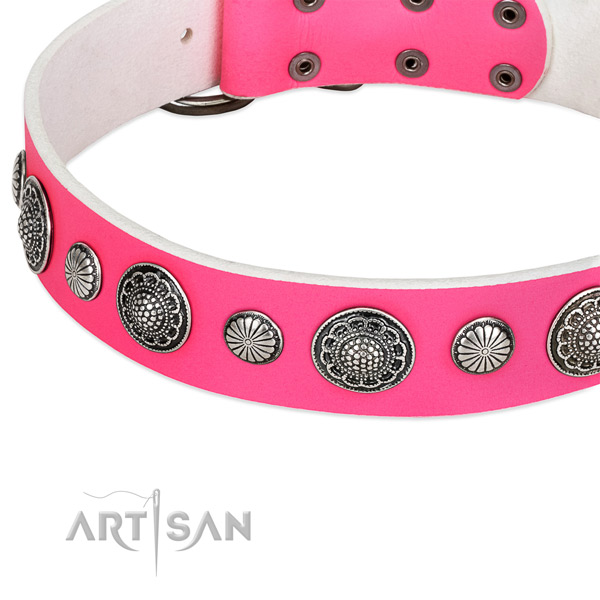 Full grain leather collar with corrosion resistant buckle for your stylish four-legged friend
