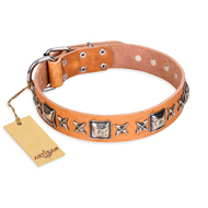 """Glamour Finery"" FDT Artisan Female Labrador collar of natural leather with stylish old-looking circles"