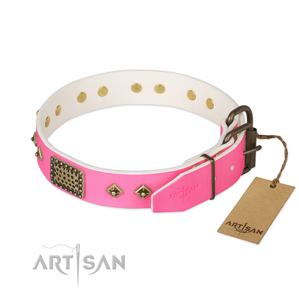 Rust resistant decorations on easy wearing dog collar