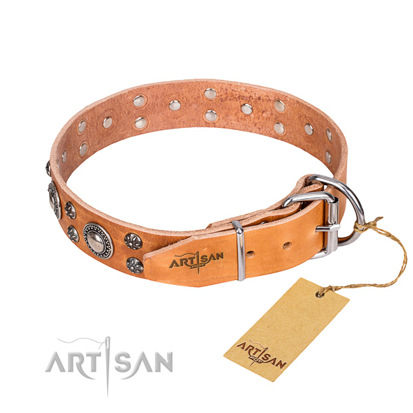 Daily use embellished dog collar of reliable genuine leather