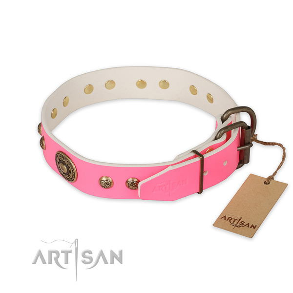 Corrosion proof traditional buckle on leather collar for walking your canine