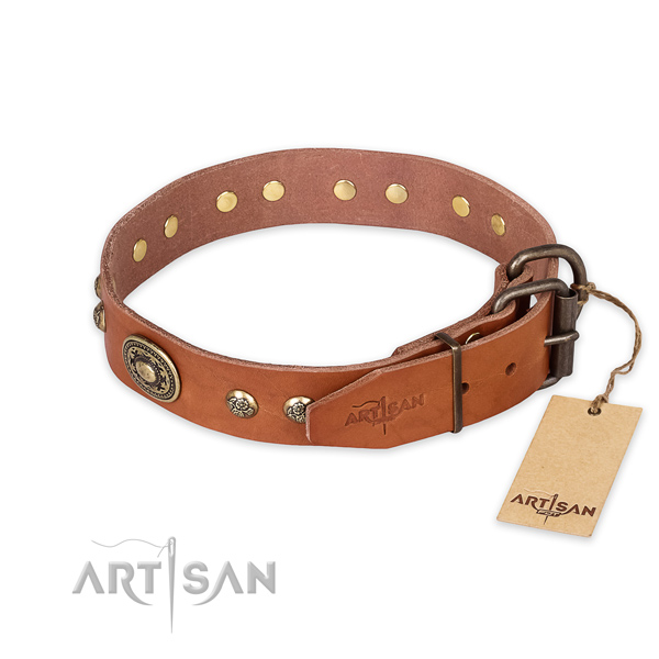 Corrosion proof buckle on full grain natural leather collar for stylish walking your pet