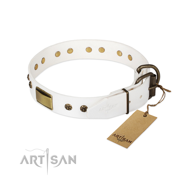 Genuine leather dog collar with reliable D-ring and studs