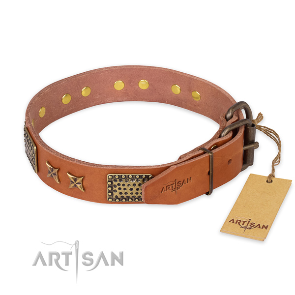 Corrosion proof buckle on full grain leather collar for your impressive four-legged friend