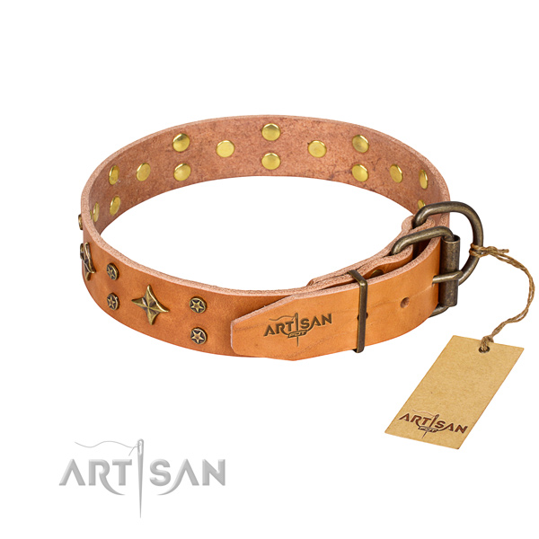 Daily walking embellished dog collar of durable full grain natural leather