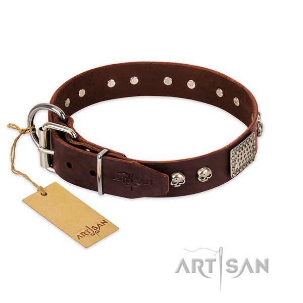 Reliable buckle on comfy wearing dog collar