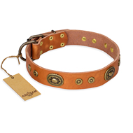 """Dandy Pet"" FDT Artisan Handcrafted Tan Leather Labrador Collar"