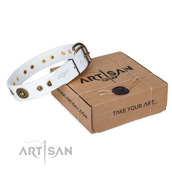 Full grain leather dog collar made of top notch material with corrosion proof hardware