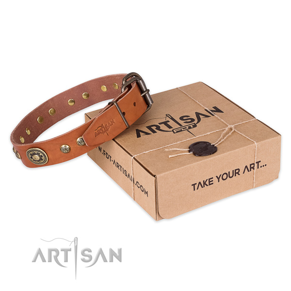 Rust resistant D-ring on leather dog collar for basic training