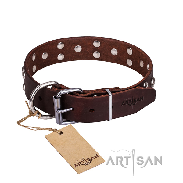 Fancy walking dog collar of fine quality full grain leather with decorations