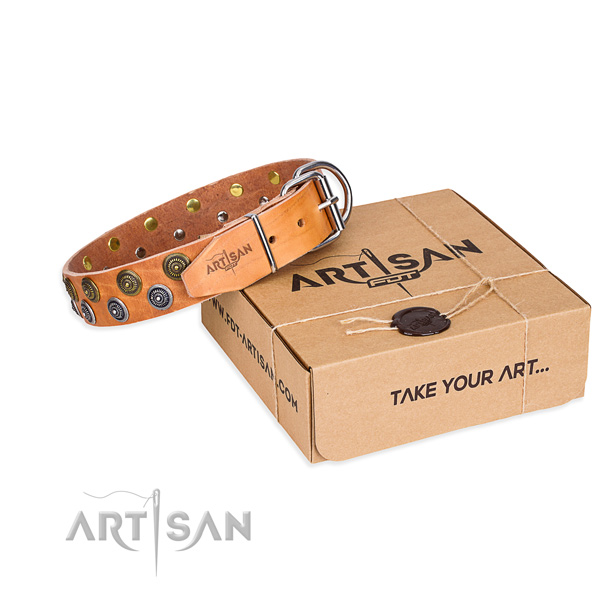 Easy wearing dog collar of reliable genuine leather with studs