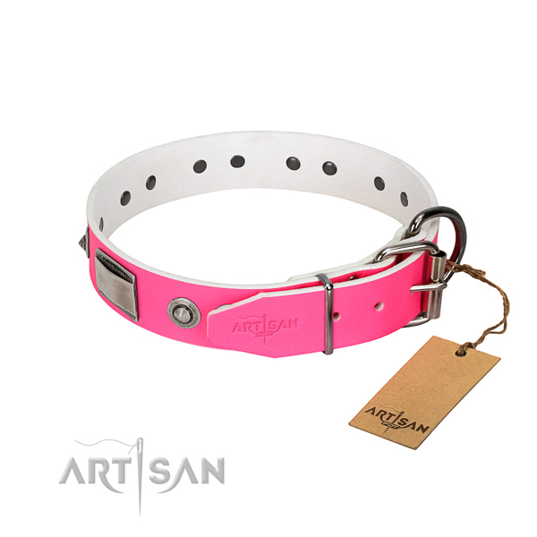Remarkable dog collar of natural leather with embellishments