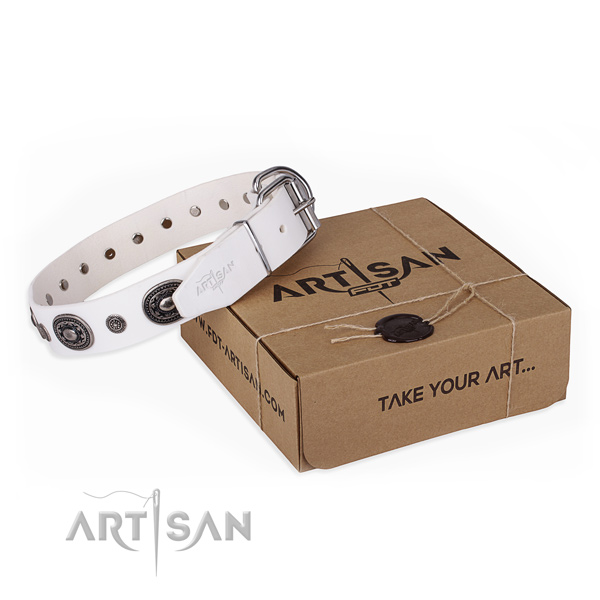 High quality genuine leather dog collar made for daily use